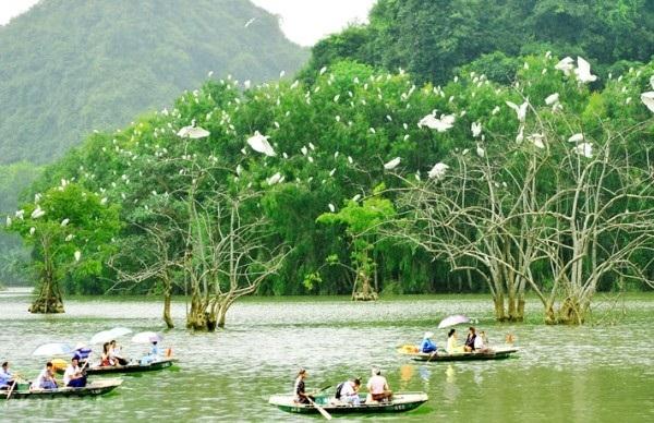 Vuon Chim Thung Nham